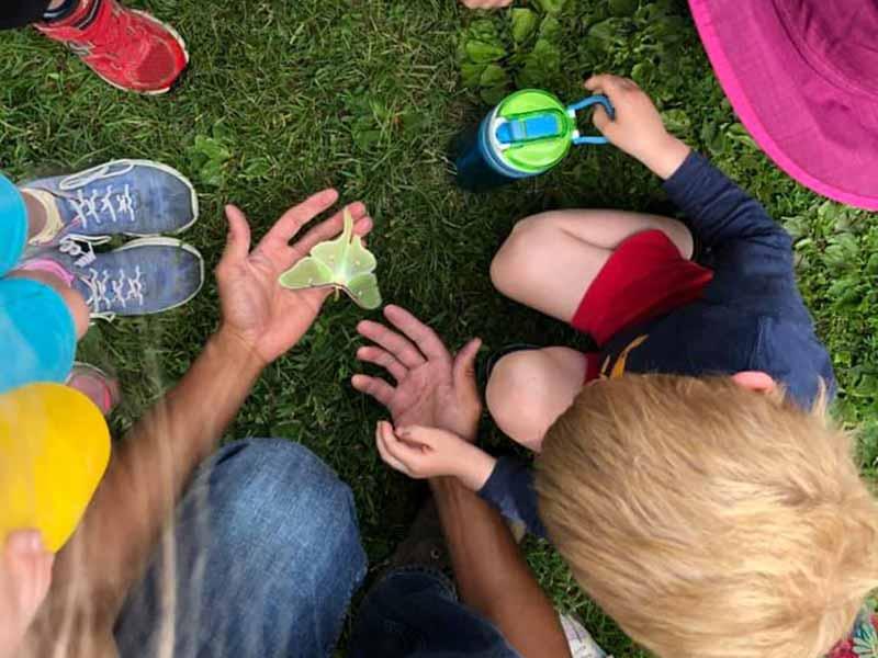 Summer Program programs from Kennebec Montessori School